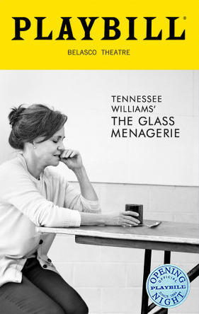 the struggle with hardships in tennessee williams the glass menagerie